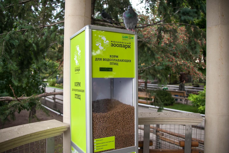 Корм для водоплавающих птиц, Московский зоопарк, Москва — ParkSeason