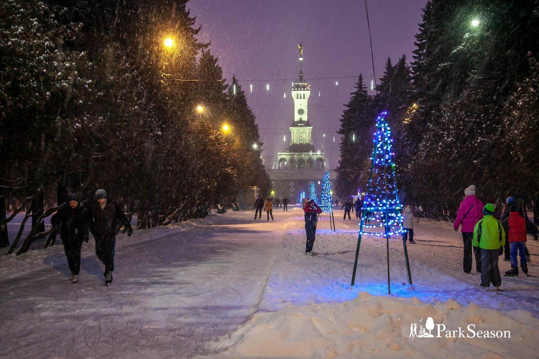 Большой каток в парке Северного речного вокзала, Парк Северного речного вокзала, Москва — ParkSeason