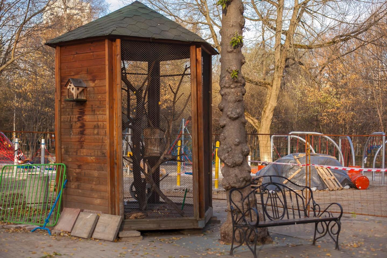 Бельчатник, Лианозовский парк, Москва — ParkSeason
