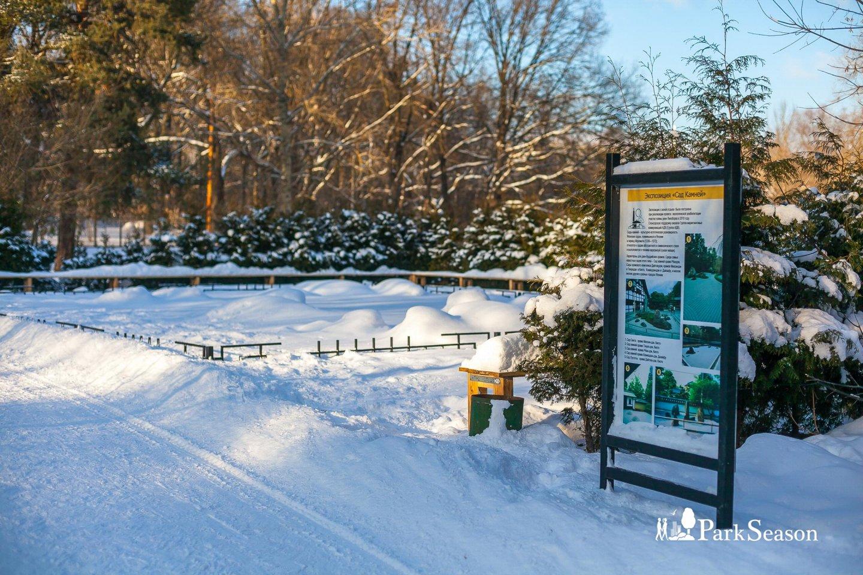 Экспозиция «Сад камней» — ParkSeason
