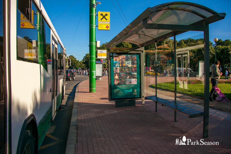 Остановка общественного транспорта «Суворовская площадь» — ParkSeason