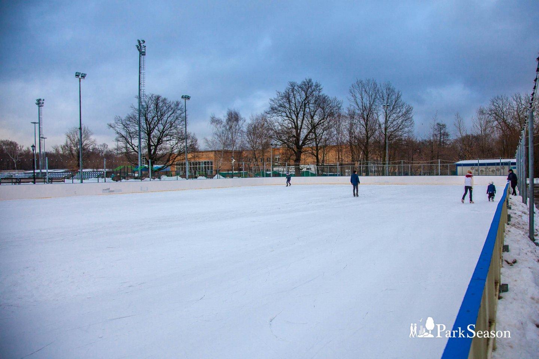 Каток в парке «Останкино» (закрыт на лето) — ParkSeason