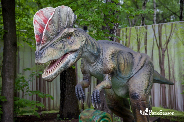 Выставка динозавров «Тайны мира», Парк «Сокольники», Москва — ParkSeason