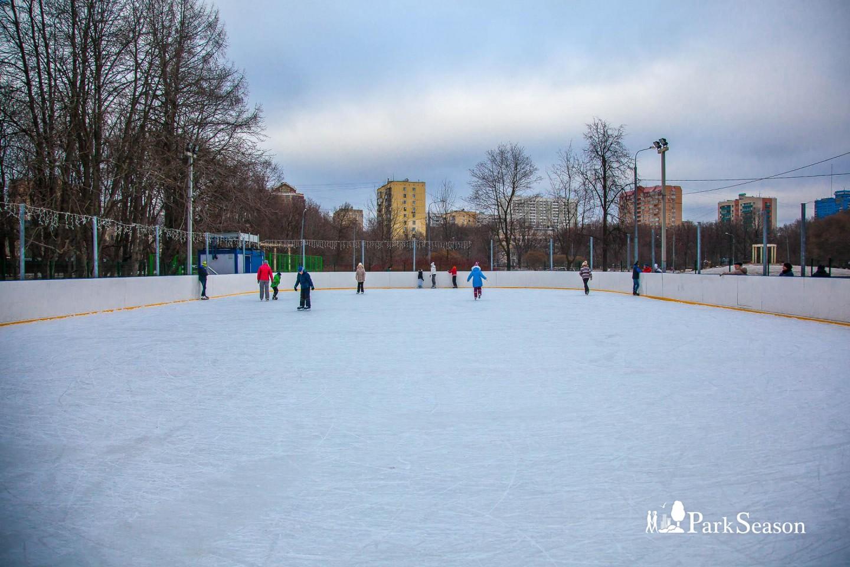 Каток в парке «Дубки»  — ParkSeason