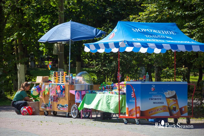 Киоск с мороженым и игрушками — ParkSeason
