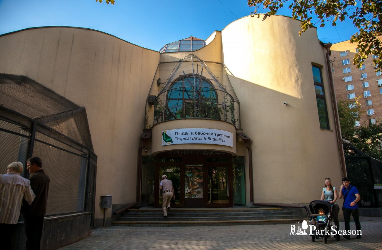 Павильон «Птицы и бабочки тропиков», Московский зоопарк, Москва — ParkSeason