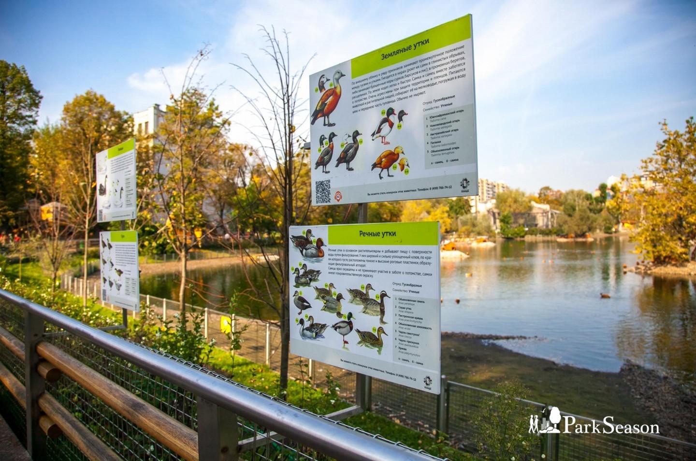 Пруд с птицами, Московский зоопарк, Москва — ParkSeason
