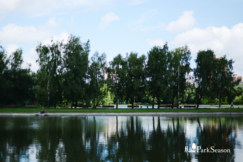 Пруды, Парк Дружбы, Москва — ParkSeason