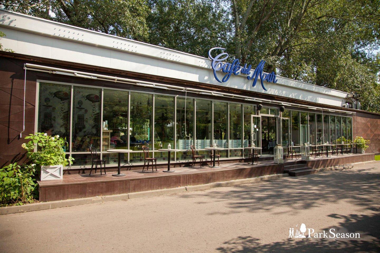 Cafe Del Mar Moscow (закрыт) — ParkSeason