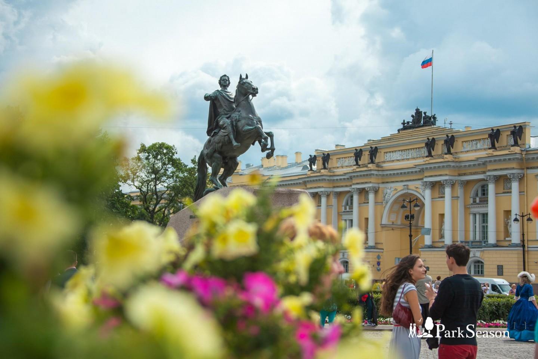 Памятник Петру I — ParkSeason