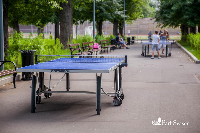 Настольный теннис, Парк «Таганский», Москва — ParkSeason