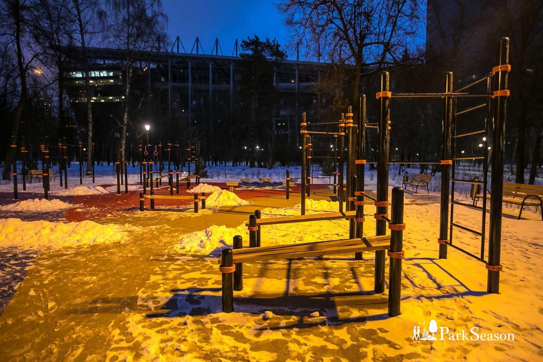 Площадка WorkOut, Парк «Березовая роща», Москва — ParkSeason