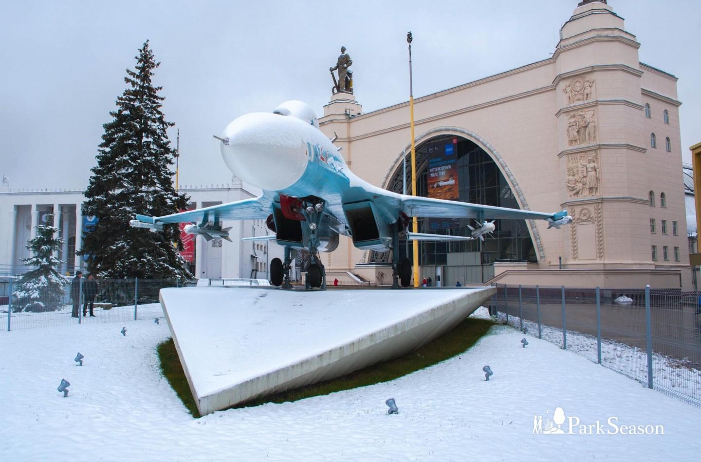 Самолет Су-27, ВДНХ, Москва — ParkSeason