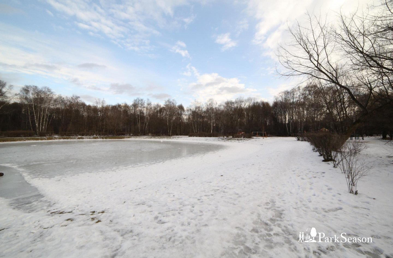 Золотой пруд, Парк «Сокольники», Москва — ParkSeason