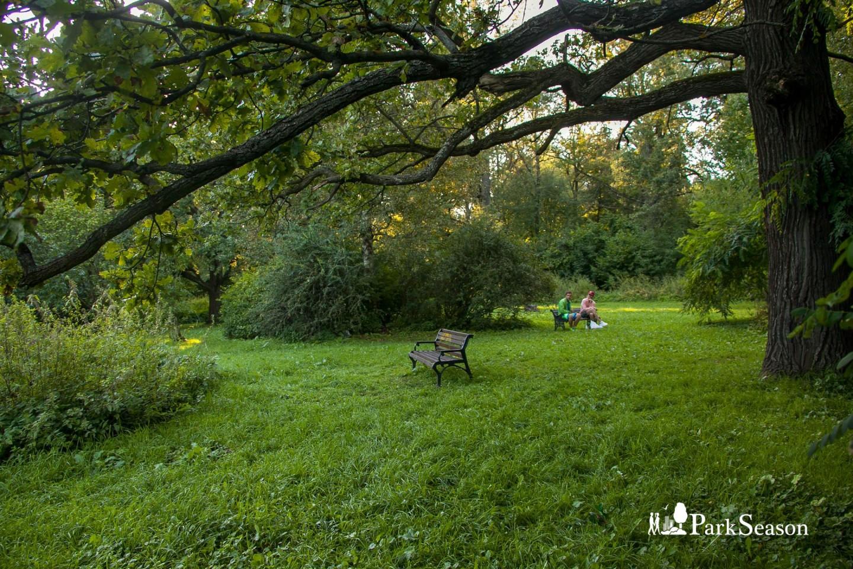 Экспозиция «Сад непрерывного цветения» — ParkSeason