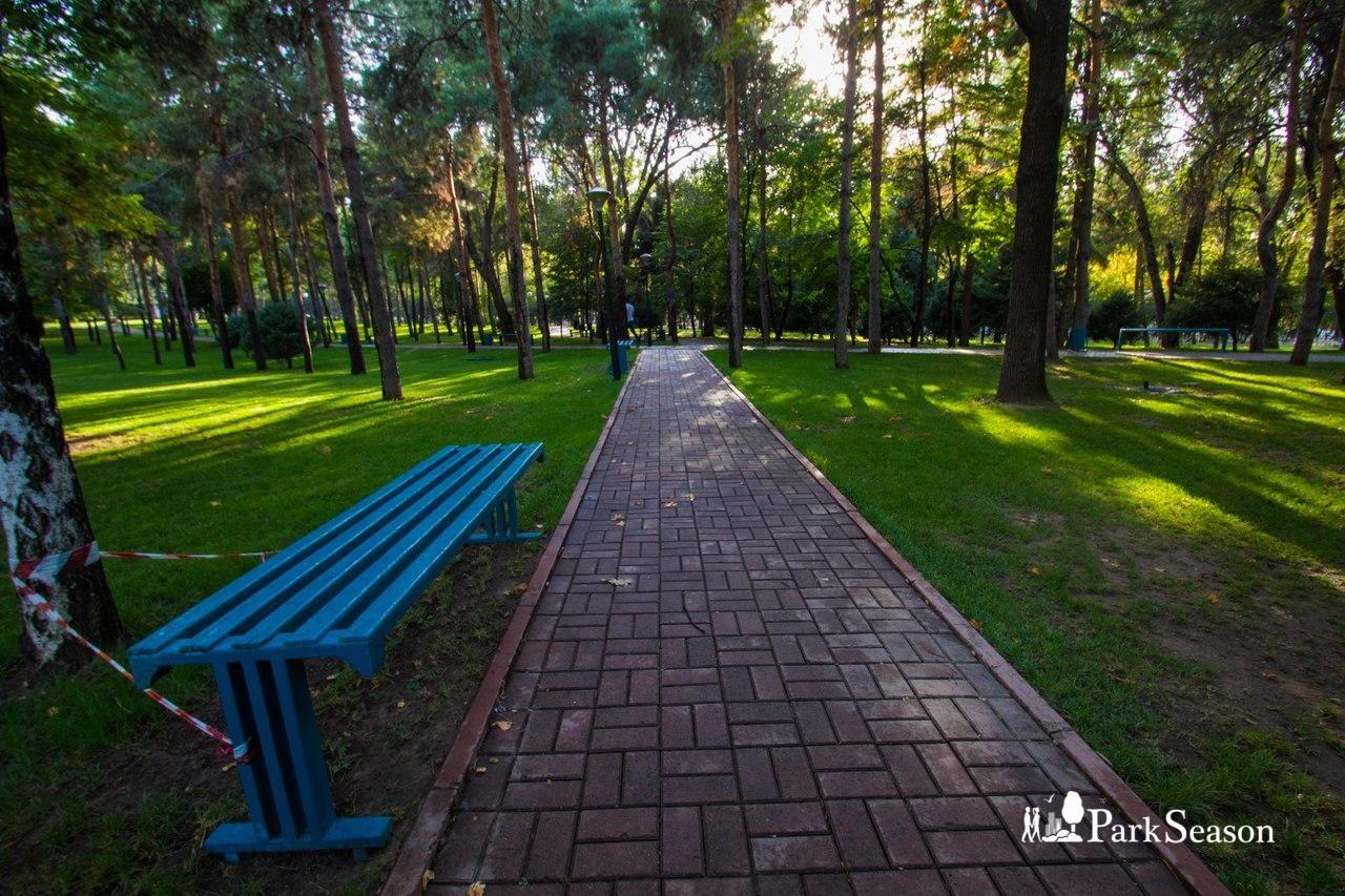 Аллея парка — ParkSeason