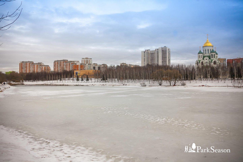 Большой Солнцевский пруд — ParkSeason