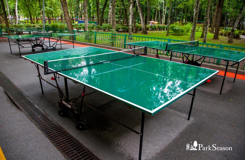 Настольный теннис, Парк «Бабушкинский», Москва — ParkSeason