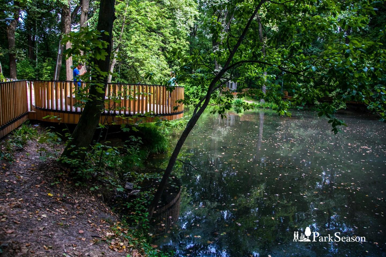 Пруд, Воробьевы горы, Москва — ParkSeason
