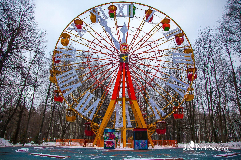 Колесо обозрения, Парк имени Льва Толстого (Химки), Москва — ParkSeason