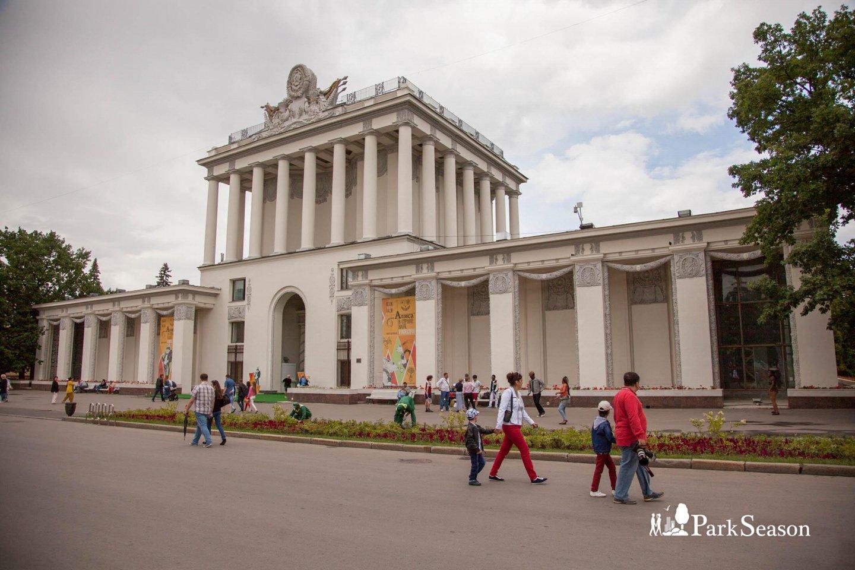 Павильон № 64: «Оптика», ВДНХ, Москва — ParkSeason