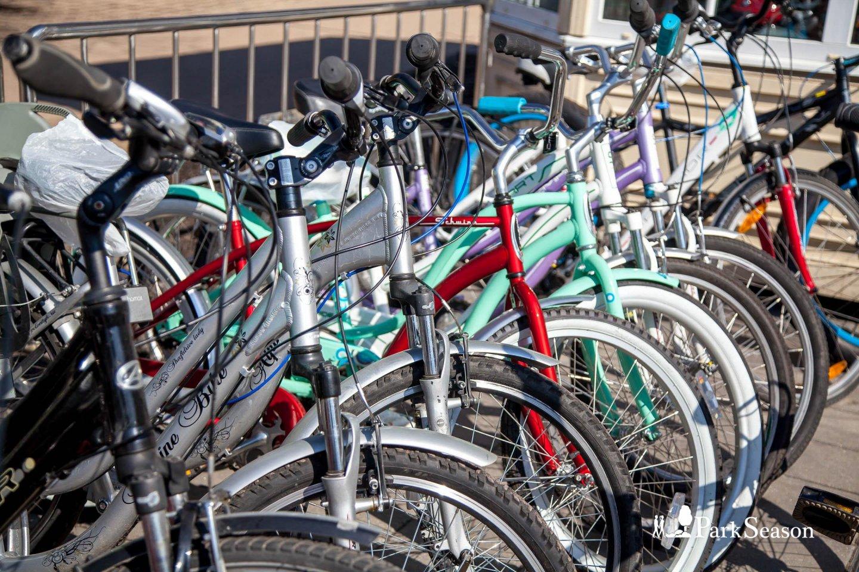 Пункт проката велосипедов на Главной аллее (закрыт до мая 2019) — ParkSeason