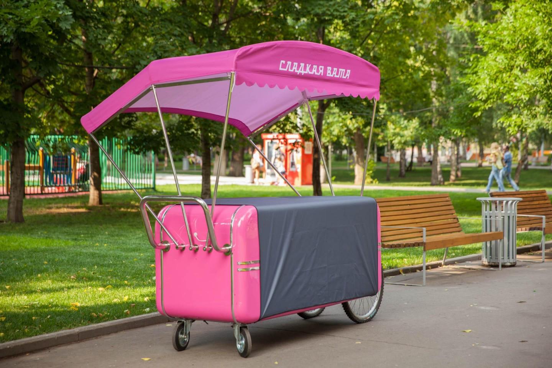 Сладкая сахарная вата, Парк «Красная Пресня», Москва — ParkSeason