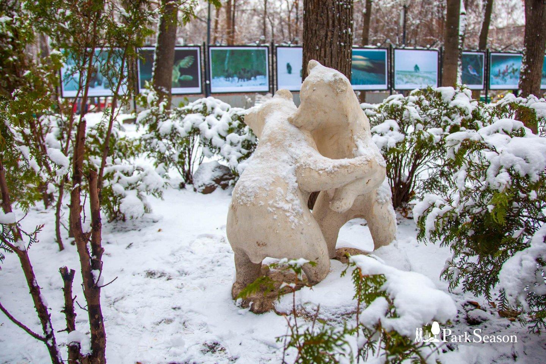 Рокарий (композиция с медведями) — ParkSeason