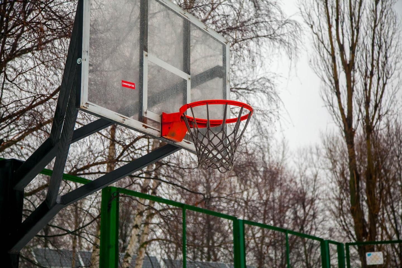 Баскетбольная площадка, Парк «Северное Тушино», Москва — ParkSeason