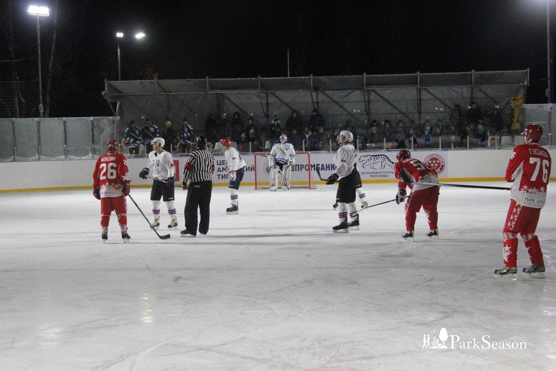 Хоккейный каток на ВДНХ, ВДНХ, Москва — ParkSeason