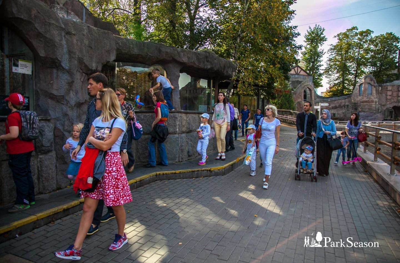 Выдра, Московский зоопарк, Москва — ParkSeason