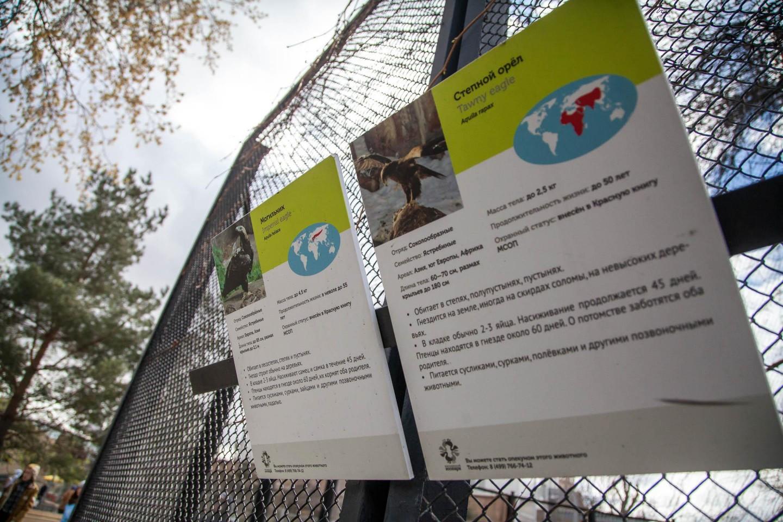 Могильник, Московский зоопарк, Москва — ParkSeason