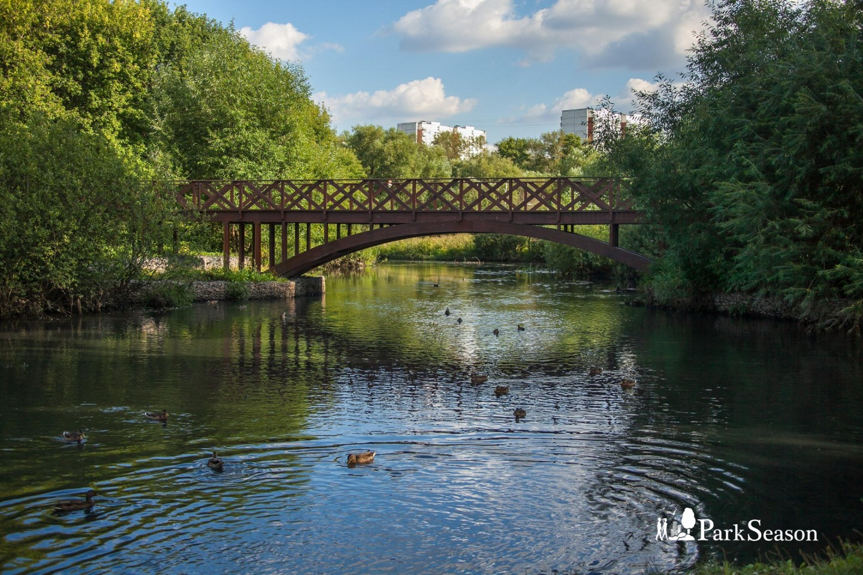 Деревянный мост — ParkSeason