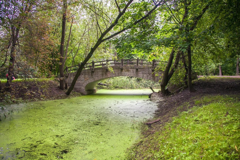 Мост — ParkSeason