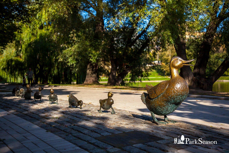 Скульптурная композиция «Дайте дорогу утятам», Парк «Новодевичьи пруды», Москва — ParkSeason