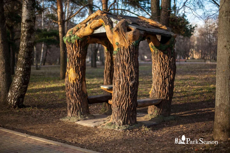 Шахматная беседка, Парк «Северное Тушино», Москва — ParkSeason