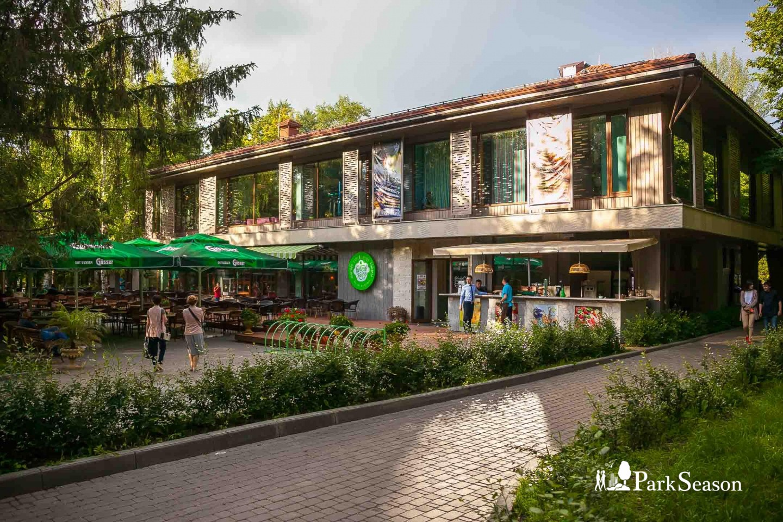 Семейное кафе «Густав» — ParkSeason
