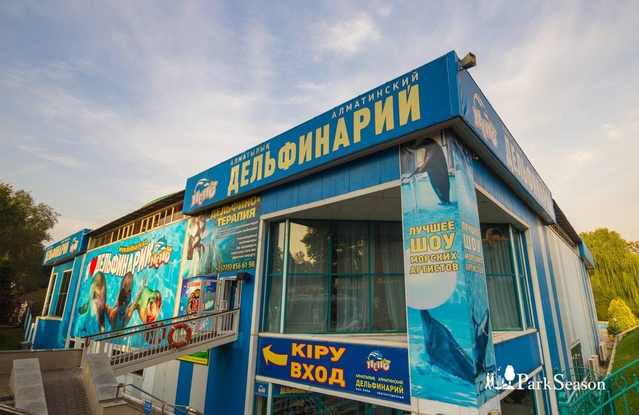 Дельфинарий «Немо» — ParkSeason