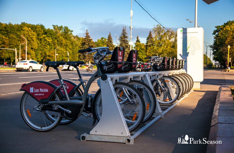 Городской прокат велосипедов, Озелененная территория МГУ, Москва — ParkSeason