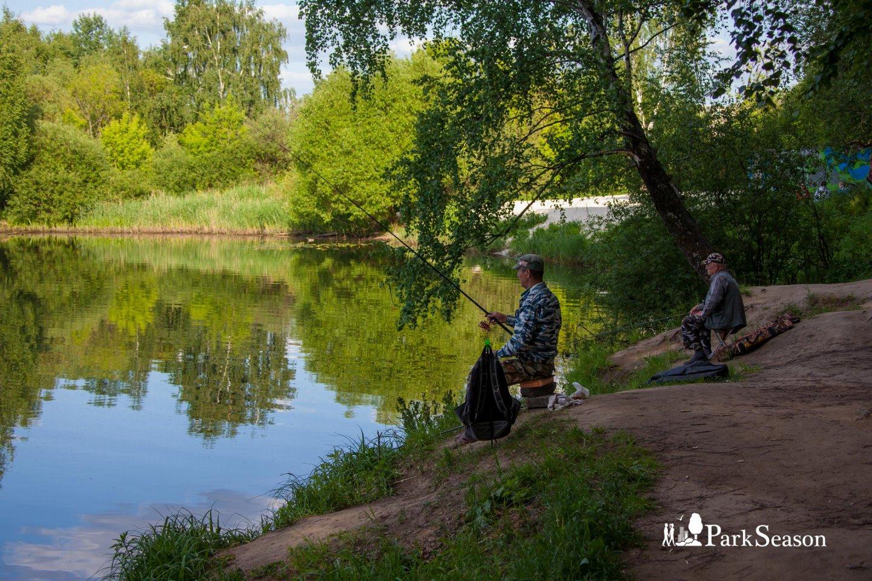 Место ловли рыбы, Строгинский парк, Москва — ParkSeason