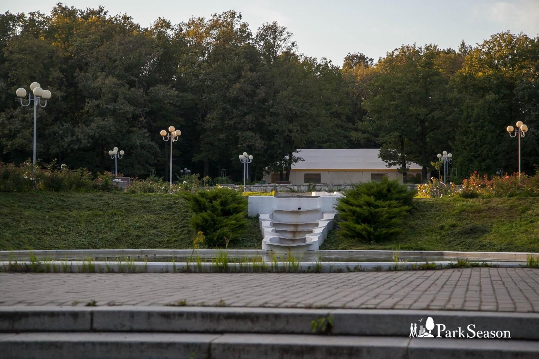 Экспозиция «Розарий» — ParkSeason