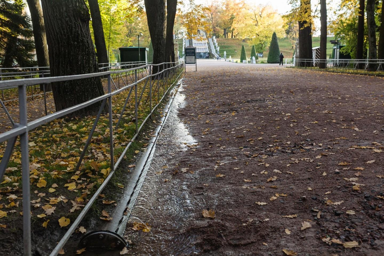 Фонтан-шутиха «Водяная дорога» — ParkSeason