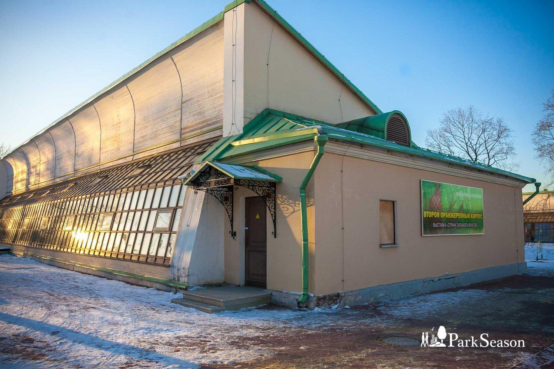 Второй оранжерейный корпус, Музей-заповедник «Царицыно», Москва — ParkSeason