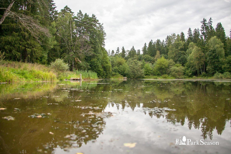 Река Саминка — ParkSeason