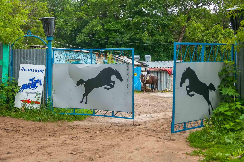 Конно-спортивный клуб — ParkSeason