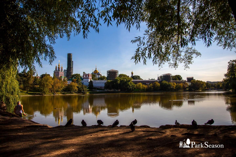 Новодевичьи пруды, Парк «Новодевичьи пруды», Москва — ParkSeason