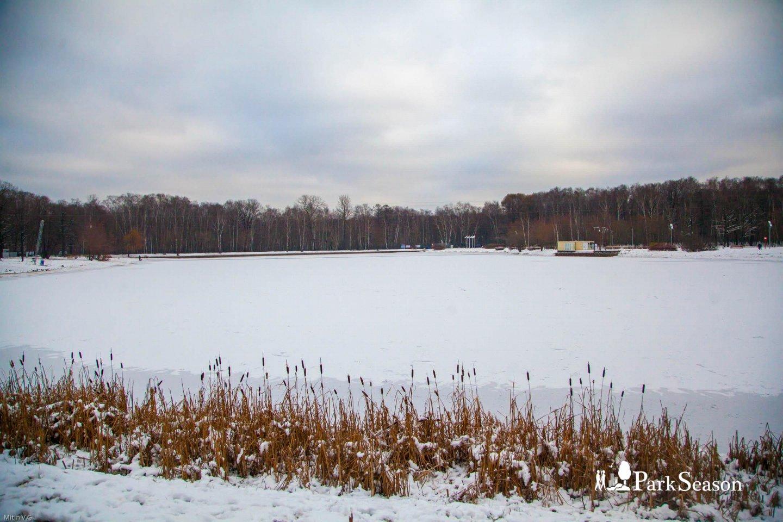 Большой Путяевский пруд, Парк «Сокольники», Москва — ParkSeason