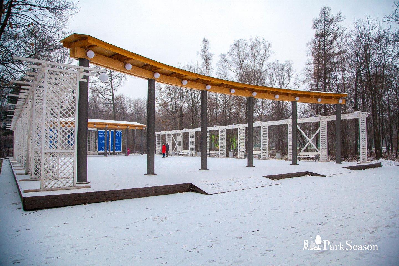 Танцпол «3+», Парк «Сокольники», Москва — ParkSeason