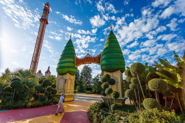 Ворота «Заколдованный лес» — ParkSeason