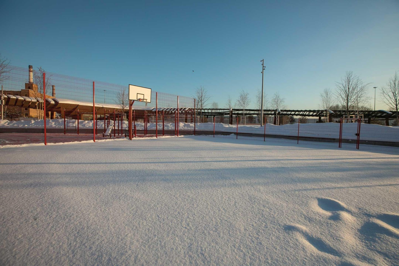 Баскетбольная площадка, Парк Тюфелева роща, Москва — ParkSeason